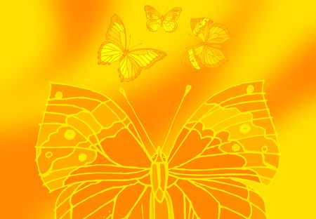 symetry: butterfly picture on color full  ground with flowers Stock Photo