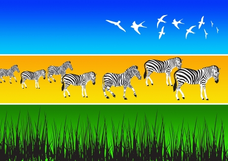 illustration of different african animal silhouettes illustration