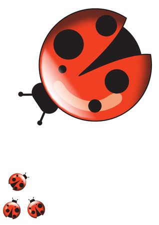 harmless: Ladybugs isolated over white background for poster