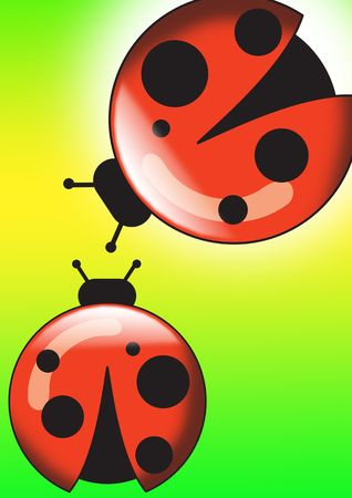 harmless: Ladybug isolated over green background for poster