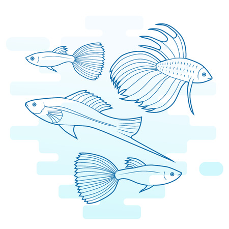 Set of sea and ocean fish. Tropical decorative fish. Modern color outline illustration. Collection of aquarium fish. Vector