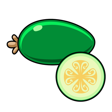feijoa: Feijoa on a white background. Feijoa sliced. Feijoa illustration. Feijoa vector. Feijoa poster. Feijoa vector illustration.