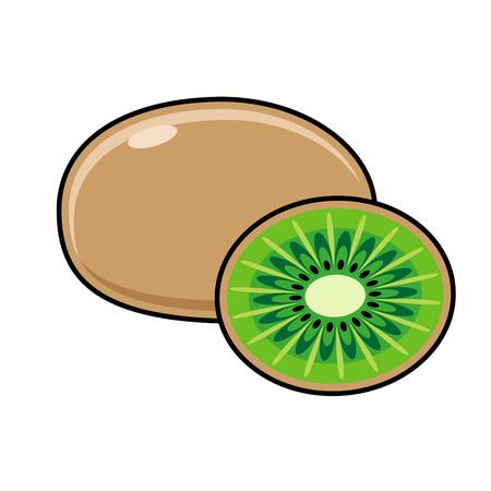 peeled: Kiwi on a white background. Sliced ??fruit. Peeled half kiwi. Vector illustration
