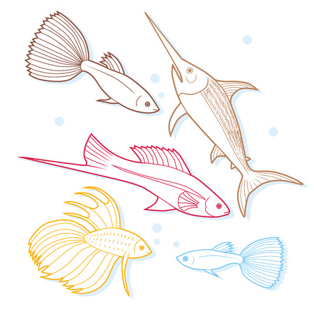 decorative fish: Set of sea and ocean fish. Tropical decorative fish. Modern color outline illustration. Collection of aquarium fish. Vector. Illustration