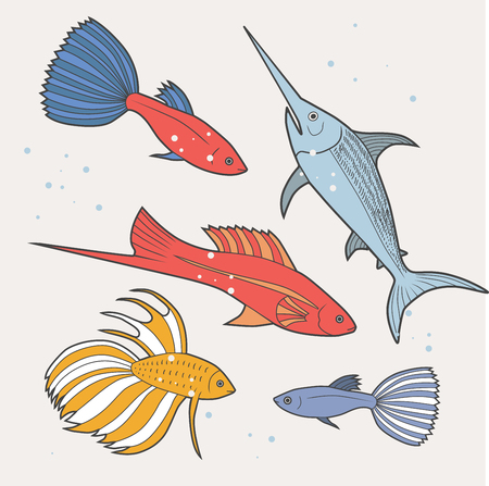 decorative fish: Set of sea and ocean fish. Tropical decorative fish. Modern color illustration. Collection of aquarium fish. Vector. Cartoon illustration. Illustration
