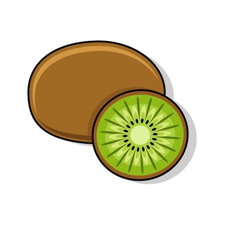 peeled: Kiwi on a white background. Sliced ??fruit. Peeled half kiwi. Vector illustration,