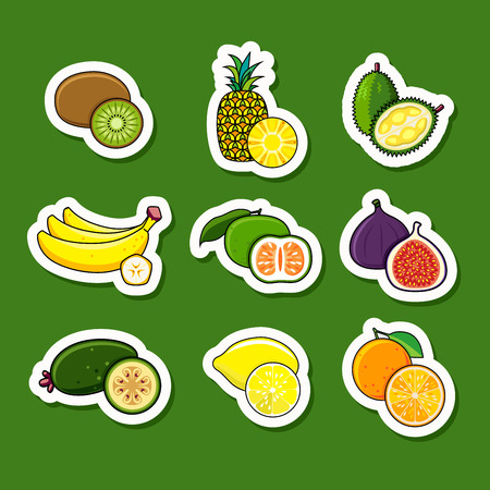 Set of citrus and tropical fruits isolated on background.