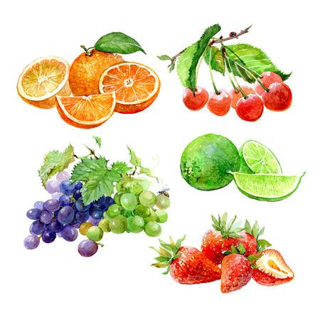수채화 과일 오렌지, 체리, 라임, 레몬, 포도, 흰색 배경에 고립 된 딸기의 집합입니다. 스톡 콘텐츠
