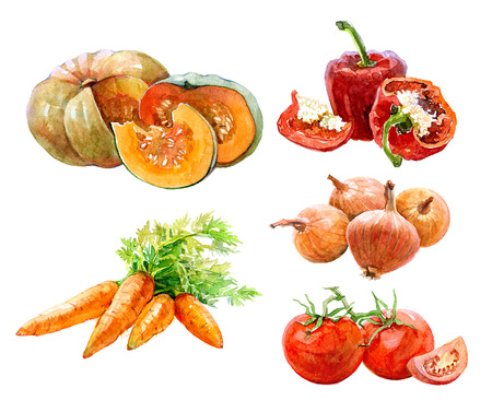 Set of watercolor vegetables onion, paprika, parrot, tomatoes, pumpkin isolated on a white background.