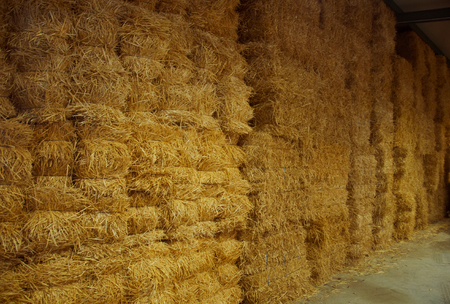 Wall of big packs of hay in the storehouse, Spain