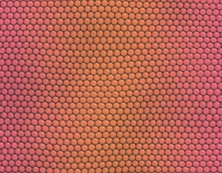 Pink and orange gradient snake skin seamless pattern, hexagonal scale