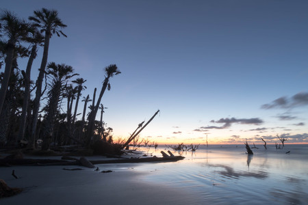 carolina: beach sunrise