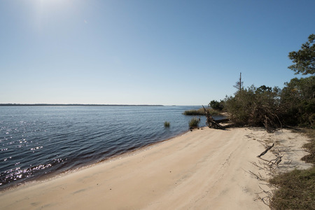small beach with forest and the Atlantic in South Carolina