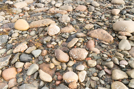 horizontal background of rocks on a beach in Canada Banco de Imagens