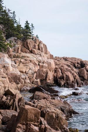 rocky coastline: rocky coastline with waves crashing and trees