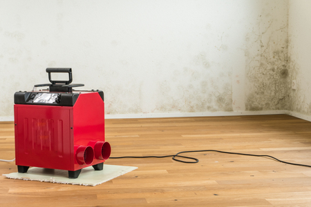 red dehumidifier in an empty room of a new apartment with a serious toxic mold and mildew problem