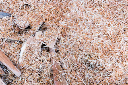 place for cutting and chopping wood outoors with wood shavings and logs and pieces of wood Stock Photo - 116677466