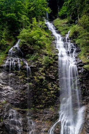 verical view of the Schmonawald waterfall in lush green summer forest in the Weisstannental in the Swiss Alps near Sargans 免版税图像