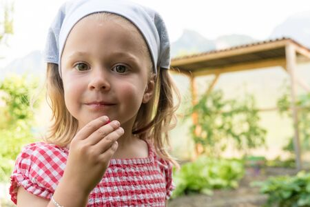 young pre-schoo girl eats a radish she just harvested in her vegetable patch