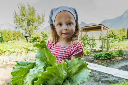 young girl proudly holding an organic lettuce she just harvested from her vegetable patch in the Swiss countryside Stock Photo