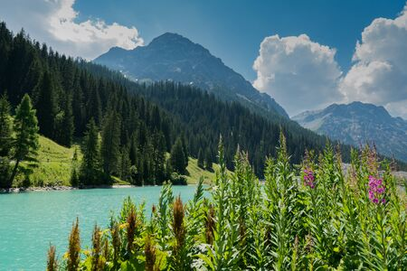 summer mountain landscape with turquoise lake and wildflowers in the Swiss Alps near Arosa