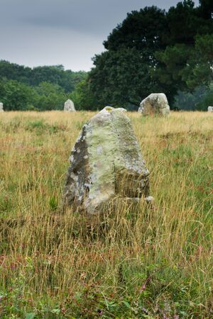 vertical view view of prehistoric monolith stone alignments in Brittany at Carnac