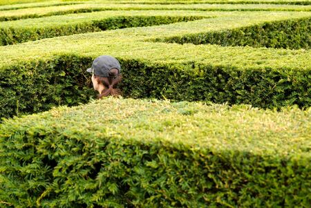 A woman wearing a baseball cap walks around lost in a giant labyrinth made of boxwood hedges
