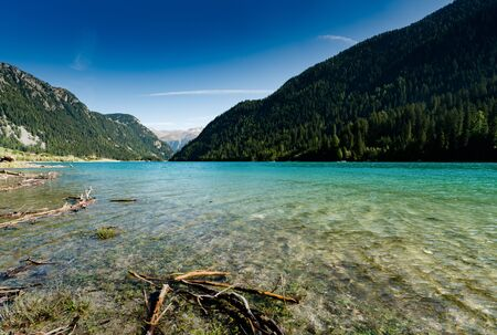 idyllic and picturesque turquoise mountain lake surrounded by green forest and mountain peaks in the Swiss Alps with driftwood in the foreground Imagens