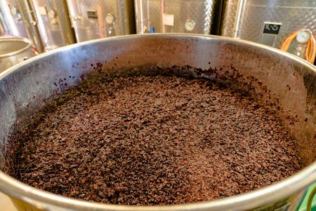 Close up of barrique pinot noir grapes fermenting in an open tank during wine-making Imagens