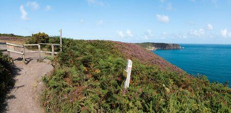 coastal hiking trail through lilac and purple heath meadows on the Emerald Coast in northern France Banco de Imagens