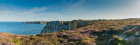 View of lilac heath meadows and jagged cliffs on the wild coast of Brittany 版權商用圖片 - 133827620