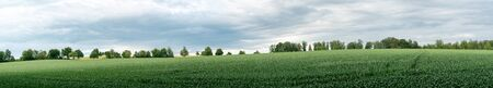 A panorama view of expansive green farm fields with trees in the background in southern Germany Reklamní fotografie