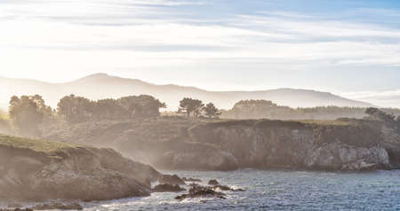 A high key view of the misty and rocky tree-lined shore in Galicia