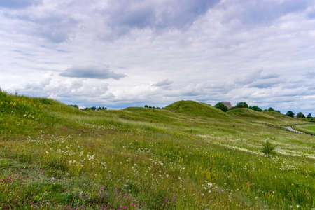 The rolling hills of Gamla Uppsala covered in long wildflower meadows with a gravel path on the side
