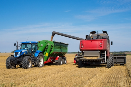 Harvest machine loading seeds in to trailer Stock Photo