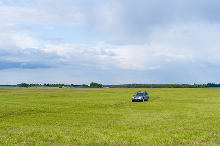 car in the meadow  photo