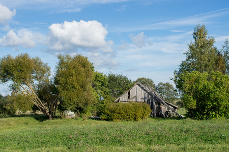 homesteads: Old abandoned homestead standing by the forest Stock Photo