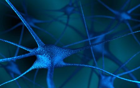 sensory receptor: Neurons In The Brain. Multipolar neuron on dark background. 3D rendering.