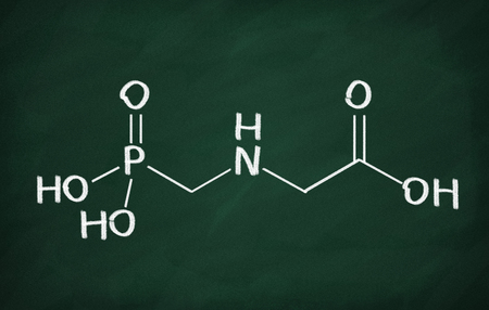 genetically modified crops: Structural model of glyphosate molecule on the blackboard. Stock Photo