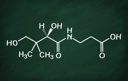 structural: Structural model of Vitamin B5 on the blackboard.