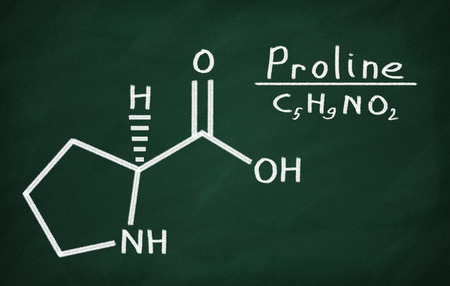 proline: Structural model of Proline on the blackboard.