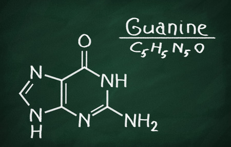 Structural model of Guanine on the blackboard.