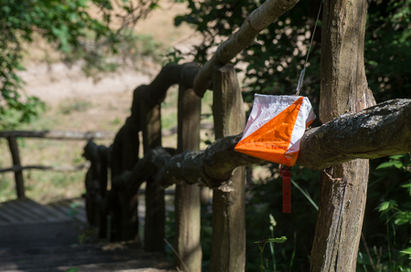 The orienteering flag in the Lithuanian forest