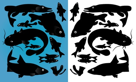 fish silhouettes Stock Vector - 9867973