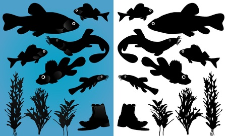 fish silhouettes Stock Vector - 9867974