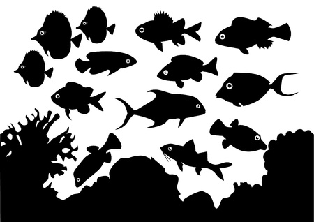 Coral Fish Stock Vector - 9867981