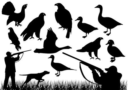 La chasse au canard Vecteurs