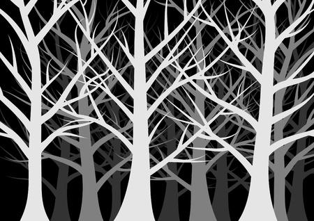 dense: dark forest full of trees