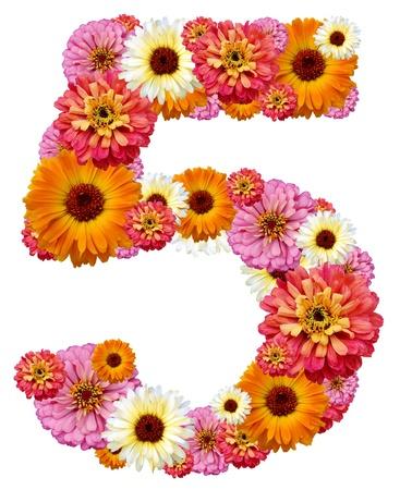 arabic numeral: arabic numeral, five