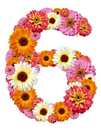 arabic numeral: arabic numeral , six